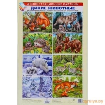 Развитие речи в картинах А3 Ушакова О.С. 8 карт.«Живая природа», ТЦ СФЕРА от ТЦ СФЕРА в Минске фото