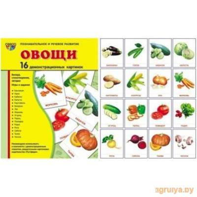 Карточки 173х220мм 16шт.«Овощи» , ТЦ СФЕРА от ТЦ СФЕРА в Минске фото