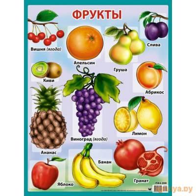 Плакат А2 «Фрукты», Оля и Женя от Оля и Женя в Минске фото