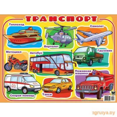 Плакат А2 «Транспорт», Оля и Женя от Оля и Женя в Минске фото