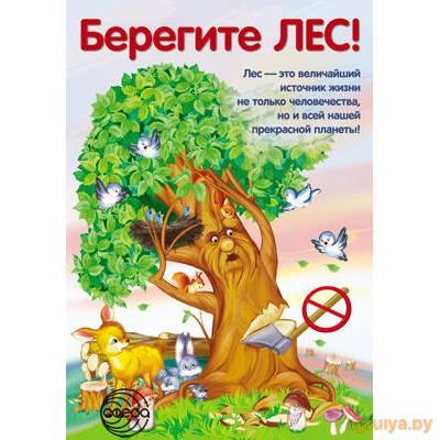 Плакат А3 «Берегите ЛЕС!.», ТЦ СФЕРА от ТЦ СФЕРА в Минске фото